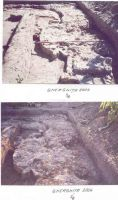 Chronicle of the Archaeological Excavations in Romania, 2004 Campaign. Report no. 107, Gherghiţa, La Târg (Şcoala Generală)<br /><a href='http://foto.cimec.ro/cronica/2004/107/rsz-16.jpg' target=_blank>Display the same picture in a new window</a>
