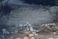 Cronica Cercetărilor Arheologice din România, Campania 2004. Raportul nr. 110, Grădiştea de Munte, Dealul Grădiştii [Sarmizegetusa Regia]<br /><a href='http://foto.cimec.ro/cronica/2004/110/rsz-1.jpg' target=_blank>Priveşte aceeaşi imagine într-o fereastră nouă</a>
