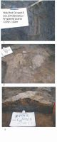 Cronica Cercetărilor Arheologice din România, Campania 2004. Raportul nr. 116, Hoiseşti, La Pod<br /><a href='http://foto.cimec.ro/cronica/2004/116/rsz-3.jpg' target=_blank>Priveşte aceeaşi imagine într-o fereastră nouă</a>