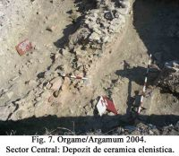 Chronicle of the Archaeological Excavations in Romania, 2004 Campaign. Report no. 129, Jurilovca, Capul Dolojman.<br /> Sector 02-poze-sector central.<br /><a href='http://foto.cimec.ro/cronica/2004/129/rsz-9.jpg' target=_blank>Display the same picture in a new window</a>