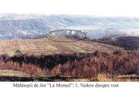 Cronica Cercetărilor Arheologice din România, Campania 2004. Raportul nr. 147, Mălăeştii De Jos, La Mornel<br /><a href='http://foto.cimec.ro/cronica/2004/147/rsz-0.jpg' target=_blank>Priveşte aceeaşi imagine într-o fereastră nouă</a>