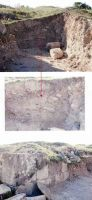 Chronicle of the Archaeological Excavations in Romania, 2004 Campaign. Report no. 163, Pantelimon, Cetate<br /><a href='http://foto.cimec.ro/cronica/2004/163/rsz-12.jpg' target=_blank>Display the same picture in a new window</a>