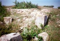 Chronicle of the Archaeological Excavations in Romania, 2004 Campaign. Report no. 163, Pantelimon, Cetate<br /><a href='http://foto.cimec.ro/cronica/2004/163/rsz-7.jpg' target=_blank>Display the same picture in a new window</a>