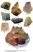 Chronicle of the Archaeological Excavations in Romania, 2004 Campaign. Report no. 174, Platoneşti, Platoul Hagieni (Valea Babii)<br /><a href='http://foto.cimec.ro/cronica/2004/174/rsz-0.jpg' target=_blank>Display the same picture in a new window</a>