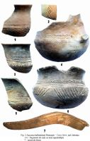 Chronicle of the Archaeological Excavations in Romania, 2004 Campaign. Report no. 174, Platoneşti, Platoul Hagieni (Valea Babii)<br /><a href='http://foto.cimec.ro/cronica/2004/174/rsz-1.jpg' target=_blank>Display the same picture in a new window</a>