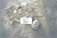 Chronicle of the Archaeological Excavations in Romania, 2004 Campaign. Report no. 183, Răducăneni, Bâzga (Cetăţuie)<br /><a href='http://foto.cimec.ro/cronica/2004/183/rsz-2.jpg' target=_blank>Display the same picture in a new window</a>
