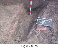 Chronicle of the Archaeological Excavations in Romania, 2004 Campaign. Report no. 189, Roşia Montană, Tăul Secuilor (Pârâul Porcului)<br /><a href='http://foto.cimec.ro/cronica/2004/189/rsz-32.jpg' target=_blank>Display the same picture in a new window</a>
