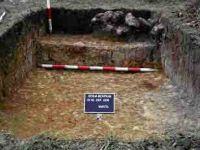 Chronicle of the Archaeological Excavations in Romania, 2004 Campaign. Report no. 189, Roşia Montană, Tăul Secuilor (Pârâul Porcului)<br /><a href='http://foto.cimec.ro/cronica/2004/189/rsz-7.jpg' target=_blank>Display the same picture in a new window</a>