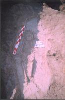 Cronica Cercetărilor Arheologice din România, Campania 2004. Raportul nr. 211, Stelnica, Grădiştea Mare<br /><a href='http://foto.cimec.ro/cronica/2004/211/rsz-2.jpg' target=_blank>Priveşte aceeaşi imagine într-o fereastră nouă</a>