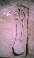 Cronica Cercetărilor Arheologice din România, Campania 2004. Raportul nr. 211, Stelnica, Grădiştea Mare<br /><a href='http://foto.cimec.ro/cronica/2004/211/rsz-6.jpg' target=_blank>Priveşte aceeaşi imagine într-o fereastră nouă</a>