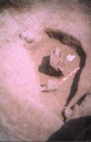 Cronica Cercetărilor Arheologice din România, Campania 2004. Raportul nr. 211, Stelnica, Grădiştea Mare<br /><a href='http://foto.cimec.ro/cronica/2004/211/rsz-9.jpg' target=_blank>Priveşte aceeaşi imagine într-o fereastră nouă</a>