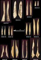 Cronica Cercetărilor Arheologice din România, Campania 2004. Raportul nr. 215, Şeuşa, Gorgan<br /><a href='http://foto.cimec.ro/cronica/2004/215/rsz-15.jpg' target=_blank>Priveşte aceeaşi imagine într-o fereastră nouă</a>