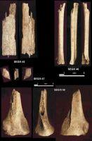Cronica Cercetărilor Arheologice din România, Campania 2004. Raportul nr. 215, Şeuşa, Gorgan<br /><a href='http://foto.cimec.ro/cronica/2004/215/rsz-17.jpg' target=_blank>Priveşte aceeaşi imagine într-o fereastră nouă</a>