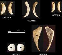Cronica Cercetărilor Arheologice din România, Campania 2004. Raportul nr. 215, Şeuşa, Gorgan<br /><a href='http://foto.cimec.ro/cronica/2004/215/rsz-19.jpg' target=_blank>Priveşte aceeaşi imagine într-o fereastră nouă</a>