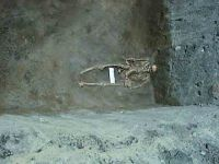Chronicle of the Archaeological Excavations in Romania, 2004 Campaign. Report no. 238, Vaslui<br /><a href='http://foto.cimec.ro/cronica/2004/238/rsz-8.jpg' target=_blank>Display the same picture in a new window</a>