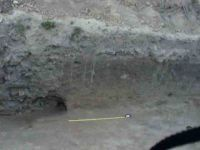 Chronicle of the Archaeological Excavations in Romania, 2004 Campaign. Report no. 238, Vaslui<br /><a href='http://foto.cimec.ro/cronica/2004/238/rsz-9.jpg' target=_blank>Display the same picture in a new window</a>