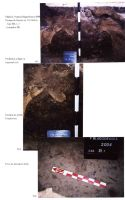 Chronicle of the Archaeological Excavations in Romania, 2004 Campaign. Report no. 244, Vlădeni, Popina Blagodeasca<br /><a href='http://foto.cimec.ro/cronica/2004/244/rsz-10.jpg' target=_blank>Display the same picture in a new window</a>