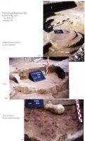 Chronicle of the Archaeological Excavations in Romania, 2004 Campaign. Report no. 244, Vlădeni, Popina Blagodeasca<br /><a href='http://foto.cimec.ro/cronica/2004/244/rsz-12.jpg' target=_blank>Display the same picture in a new window</a>