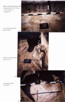 Chronicle of the Archaeological Excavations in Romania, 2004 Campaign. Report no. 244, Vlădeni, Popina Blagodeasca<br /><a href='http://foto.cimec.ro/cronica/2004/244/rsz-7.jpg' target=_blank>Display the same picture in a new window</a>