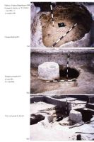 Chronicle of the Archaeological Excavations in Romania, 2004 Campaign. Report no. 244, Vlădeni, Popina Blagodeasca<br /><a href='http://foto.cimec.ro/cronica/2004/244/rsz-9.jpg' target=_blank>Display the same picture in a new window</a>