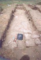 Chronicle of the Archaeological Excavations in Romania, 2005 Campaign. Report no. 2, Adamclisi, Cetate.<br /> Sector sectorD.<br /><a href='http://foto.cimec.ro/cronica/2005/002/rsz-13.jpg' target=_blank>Display the same picture in a new window</a>