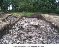 Chronicle of the Archaeological Excavations in Romania, 2005 Campaign. Report no. 29, Augustin, Tipia Ormenişului (Ţepelul Ormenişului)<br /><a href='http://foto.cimec.ro/cronica/2005/029/rsz-3.jpg' target=_blank>Display the same picture in a new window</a>