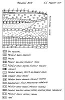 Chronicle of the Archaeological Excavations in Romania, 2005 Campaign. Report no. 38, Brădeni<br /><a href='http://foto.cimec.ro/cronica/2005/038/rsz-2.jpg' target=_blank>Display the same picture in a new window</a>