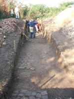 Chronicle of the Archaeological Excavations in Romania, 2005 Campaign. Report no. 47, Bulci, La Cetate (La Mănăstire)<br /><a href='http://foto.cimec.ro/cronica/2005/047/rsz-0.jpg' target=_blank>Display the same picture in a new window</a>