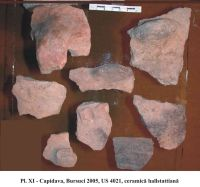 Chronicle of the Archaeological Excavations in Romania, 2005 Campaign. Report no. 50, Capidava, La Grajduri.<br /> Sector 06-ilustratie sector X.<br /><a href='http://foto.cimec.ro/cronica/2005/050/rsz-11.jpg' target=_blank>Display the same picture in a new window</a>