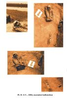 Chronicle of the Archaeological Excavations in Romania, 2005 Campaign. Report no. 50, Capidava, La Grajduri.<br /> Sector 06-ilustratie sector X.<br /><a href='http://foto.cimec.ro/cronica/2005/050/rsz-2.jpg' target=_blank>Display the same picture in a new window</a>