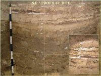 Chronicle of the Archaeological Excavations in Romania, 2005 Campaign. Report no. 59, Cheia, Vatra satului.<br /> Sector ILUSTRATIE-CHEIA-2017.<br /><a href='http://foto.cimec.ro/cronica/2005/059/rsz-2.jpg' target=_blank>Display the same picture in a new window</a>