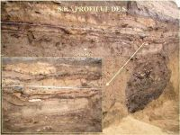 Chronicle of the Archaeological Excavations in Romania, 2005 Campaign. Report no. 59, Cheia, Vatra satului.<br /> Sector ILUSTRATIE-CHEIA-2017.<br /><a href='http://foto.cimec.ro/cronica/2005/059/rsz-3.jpg' target=_blank>Display the same picture in a new window</a>