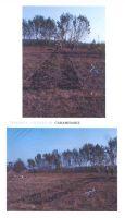 Cronica Cercetărilor Arheologice din România, Campania 2005. Raportul nr. 60, Chitila, Cărămidărie<br /><a href='http://foto.cimec.ro/cronica/2005/060/rsz-0.jpg' target=_blank>Priveşte aceeaşi imagine într-o fereastră nouă</a>