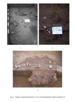 Chronicle of the Archaeological Excavations in Romania, 2005 Campaign. Report no. 79, Fulgeriş, La Trei Cireşi (Dealul Fulgeriş)<br /><a href='http://foto.cimec.ro/cronica/2005/079/rsz-3.jpg' target=_blank>Display the same picture in a new window</a>
