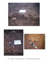 Chronicle of the Archaeological Excavations in Romania, 2005 Campaign. Report no. 79, Fulgeriş, La Trei Cireşi (Dealul Fulgeriş)<br /><a href='http://foto.cimec.ro/cronica/2005/079/rsz-4.jpg' target=_blank>Display the same picture in a new window</a>