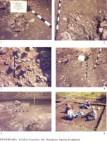 Chronicle of the Archaeological Excavations in Romania, 2005 Campaign. Report no. 91, Hunedoara, Grădina Castelului (Platou)<br /><a href='http://foto.cimec.ro/cronica/2005/091/rsz-0.jpg' target=_blank>Display the same picture in a new window</a>