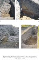 Chronicle of the Archaeological Excavations in Romania, 2005 Campaign. Report no. 96, Isaccea, La Pontonul Vechi (Cetate, Eski-kale)<br /><a href='http://foto.cimec.ro/cronica/2005/096/rsz-31.jpg' target=_blank>Display the same picture in a new window</a>