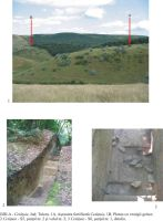 Chronicle of the Archaeological Excavations in Romania, 2005 Campaign. Report no. 100, Jijila, Cetăţuie<br /><a href='http://foto.cimec.ro/cronica/2005/100/rsz-0.jpg' target=_blank>Display the same picture in a new window</a>