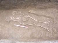 Chronicle of the Archaeological Excavations in Romania, 2005 Campaign. Report no. 111, Mangalia<br /><a href='http://foto.cimec.ro/cronica/2005/111/rsz-1.jpg' target=_blank>Display the same picture in a new window</a>