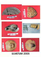 Chronicle of the Archaeological Excavations in Romania, 2005 Campaign. Report no. 133, Pantelimon, Cetate<br /><a href='http://foto.cimec.ro/cronica/2005/133/rsz-11.jpg' target=_blank>Display the same picture in a new window</a>