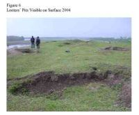 Chronicle of the Archaeological Excavations in Romania, 2005 Campaign. Report no. 136, Pecica, Şanţul Mare<br /><a href='http://foto.cimec.ro/cronica/2005/136/rsz-6.jpg' target=_blank>Display the same picture in a new window</a>