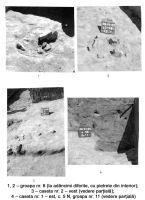 Cronica Cercetărilor Arheologice din România, Campania 2005. Raportul nr. 165, Satu Nou, Vadu Vacilor<br /><a href='http://foto.cimec.ro/cronica/2005/165/rsz-4.jpg' target=_blank>Priveşte aceeaşi imagine într-o fereastră nouă</a>