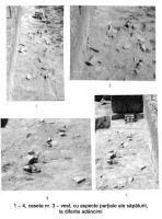 Cronica Cercetărilor Arheologice din România, Campania 2005. Raportul nr. 165, Satu Nou, Vadu Vacilor<br /><a href='http://foto.cimec.ro/cronica/2005/165/rsz-6.jpg' target=_blank>Priveşte aceeaşi imagine într-o fereastră nouă</a>