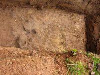 Cronica Cercetărilor Arheologice din România, Campania 2005. Raportul nr. 199, Tilişca, Dealul Căţănaş<br /><a href='http://foto.cimec.ro/cronica/2005/199/rsz-0.jpg' target=_blank>Priveşte aceeaşi imagine într-o fereastră nouă</a>