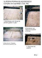 Chronicle of the Archaeological Excavations in Romania, 2005 Campaign. Report no. 217, Vlădeni, Popina Blagodeasca<br /><a href='http://foto.cimec.ro/cronica/2005/217/rsz-5.jpg' target=_blank>Display the same picture in a new window</a>
