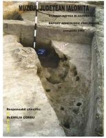 Chronicle of the Archaeological Excavations in Romania, 2005 Campaign. Report no. 217, Vlădeni, Popina Blagodeasca<br /><a href='http://foto.cimec.ro/cronica/2005/217/rsz-7.jpg' target=_blank>Display the same picture in a new window</a>