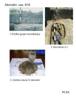 Chronicle of the Archaeological Excavations in Romania, 2005 Campaign. Report no. 217, Vlădeni, Popina Blagodeasca<br /><a href='http://foto.cimec.ro/cronica/2005/217/rsz-9.jpg' target=_blank>Display the same picture in a new window</a>