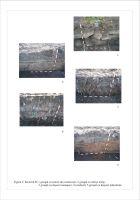 Cronica Cercetărilor Arheologice din România, Campania 2006. Raportul nr. 57, Chitila, Cărămidărie<br /><a href='http://foto.cimec.ro/cronica/2006/057/rsz-1.jpg' target=_blank>Priveşte aceeaşi imagine într-o fereastră nouă</a>