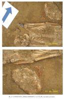 Cronica Cercetărilor Arheologice din România, Campania 2006. Raportul nr. 65, Constanţa, Strada Jupiter (Magazinul Tomis)<br /><a href='http://foto.cimec.ro/cronica/2006/065/rsz-12.jpg' target=_blank>Priveşte aceeaşi imagine într-o fereastră nouă</a>