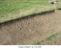 Chronicle of the Archaeological Excavations in Romania, 2006 Campaign. Report no. 67, Costişa, Dealul Cetăţuia<br /><a href='http://foto.cimec.ro/cronica/2006/067/rsz-3.jpg' target=_blank>Display the same picture in a new window</a>